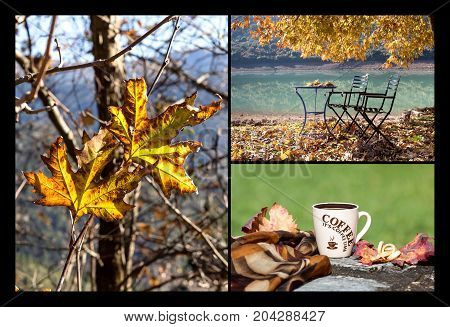Autumnal collage of photos with a cup of coffee, autumn mountains and leaves