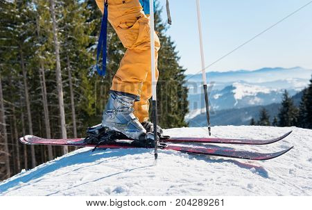 Cropped Shot Of A Skier In Yellow Ski Pants Wearing Skis Standing On Top Of A Slope In The Mountains