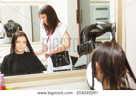 Woman Getting Hair Cut In A Beauty Salon