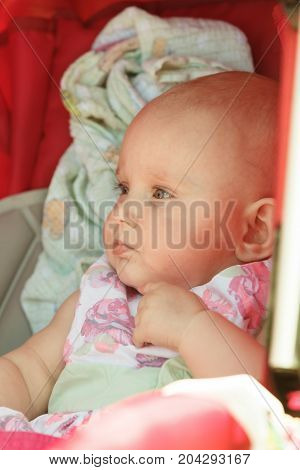 Little Happy Baby In Stroller
