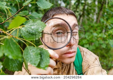 Photo of botanist man with magnifying glass in summer forest