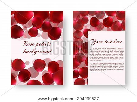 Background for drawing greeting cards with rose petals. Vector design with borders from floral elements.