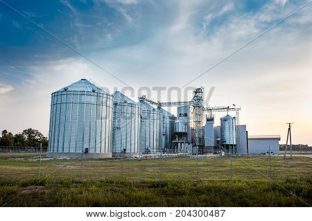 Big group of grain dryers complex for drying wheat. Modern grain silo. Agriculture concept.