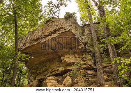 A (10 m) 30 foot high group of rock outcroppings in the appalachian foothills.
