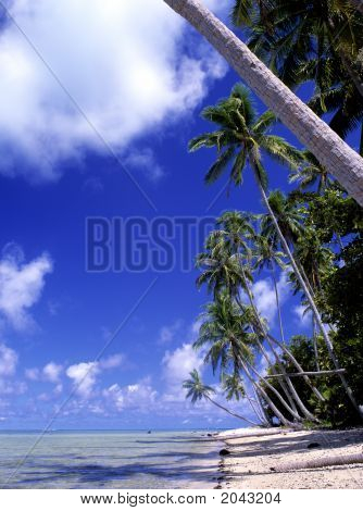 Tropical Island, Bora Bora