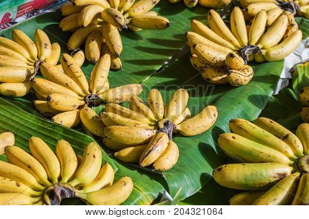 Cluster Banana on sales in the market.