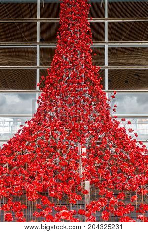 Cardiff Wales United Kingdom - September 15 2017: Weeping Window a cascade of several thousand handmade Poppies pouring from a window of the Welsh Assembly Building in Cardiff Bay Cardiff.