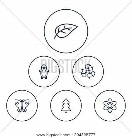Collection Of Recycle, Butterfly, Fir Tree And Other Elements.  Set Of 6 Ecology Outline Icons Set.