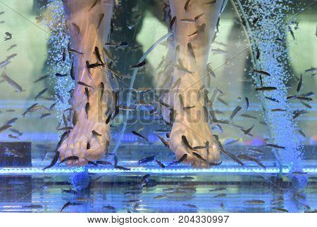 Skin care. Legs in the aquarium. Beauty salon.