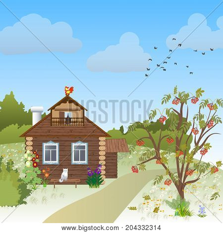 wooden rustic house in autumn tree forest cat