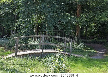 Small wooden bridge over a small brook in a forest