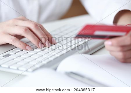 Female Hands Hold Credit Card