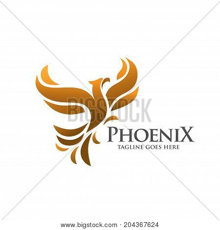 elegant phoenix, fire bird, legend, hawk, eagle logo concept