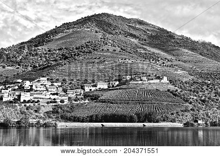 Portuguese Village Surrounded by Vineyards on the Banks of the River Douro Stylized Photo