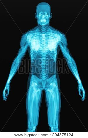 3D render illustration of human body with visible skeleton and muscles on black background