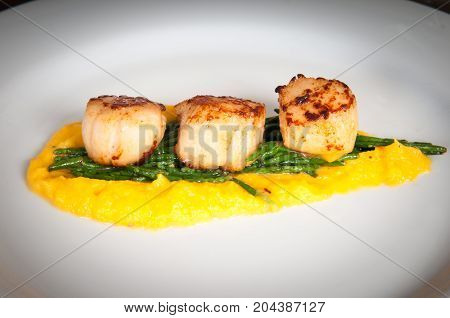 Gourmet Seafood Dish Of Scallops And Asparagus On A White Plate