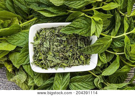 dried mint, natural and organic fresh mint pictures, dried mint sauce into the picture to make soup,