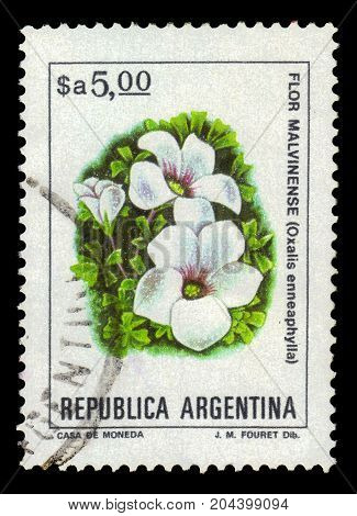 ARGENTINA - CIRCA 1982: a stamp printed in the Argentina shows oxalis enneaphylla, scurvy-grass sorrel, is alpine perennial herbaceous plant native to the grasslands of Patagonia and the Falkland Islands, series, circa 1982