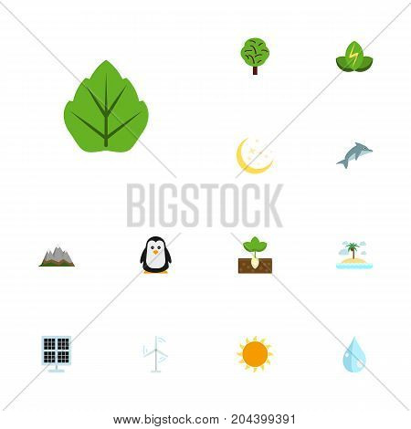 Flat Icons Sunshine, Emperor, Wood And Other Vector Elements