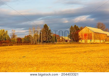 Old weathered barn in Wisconsin with colorful autumn trees