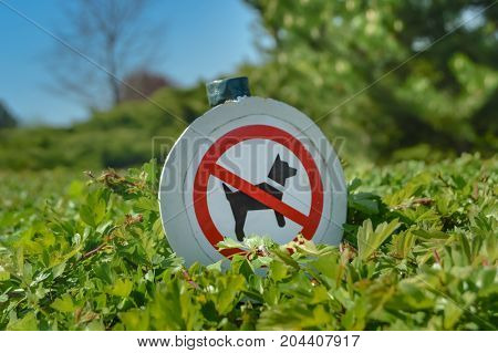 Barrier of the passage of dogs on a hedge in bushes in a park in France