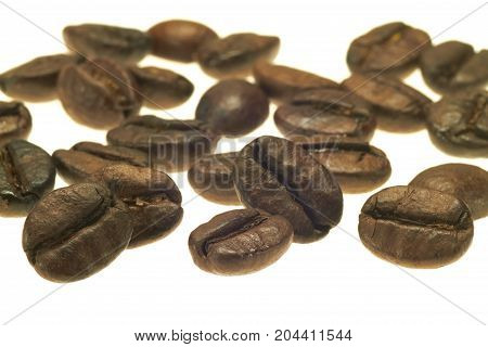 Some coffee beans lie side by side against white background.