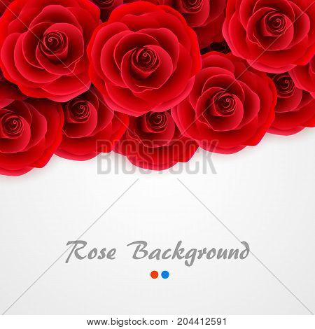 Red roses background. Rose cover for wedding invitation, postcard, greeting card or valentine day banner. Flower and romantic motive backdrop. Vector illustration