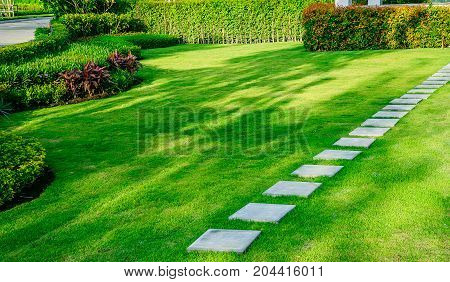 Blurred Pathway in garden,green lawns with bricks pathways,garden landscape design