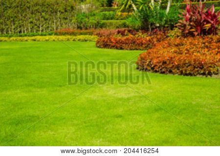 Blurring Landscape formal, front yard is beautifully designed garden.