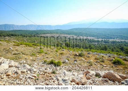 Rocky fields and forests of Srd mountain in Dubrovnik Croatia.