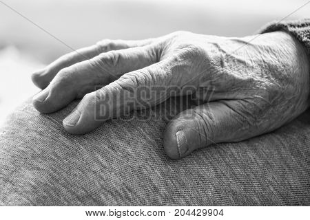 Wrinkled Hand Of A Senior Person