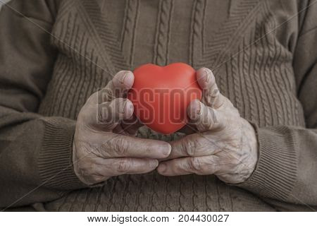 Wrinkled Hands Holding A Red Heart