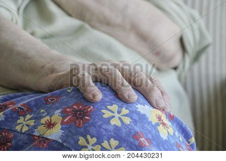 Closeup Wrinkled Hand Of A Senior Woman