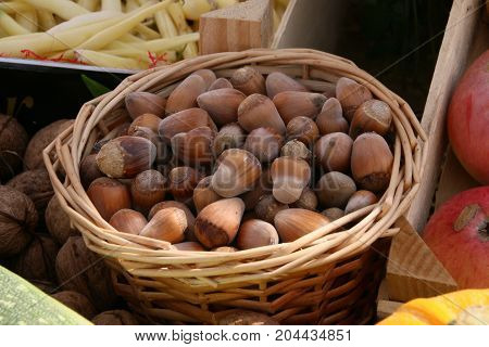 Beautiful decoration: hazel-nuts in a basket for Thanksgiving or Christmas.