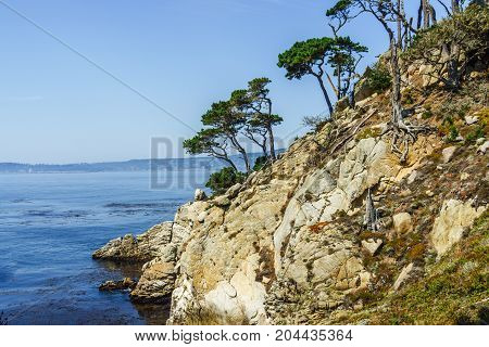 Carmel Pacific Sea Shore With Rock And Blue Sky