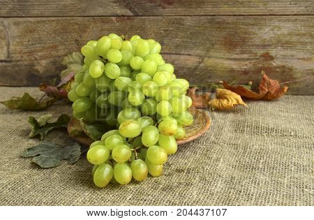 The bunch of the ripened green grapes is on a wooden dish.