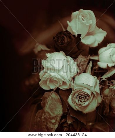 Victorian Theme Of Lost Romance, faded roses