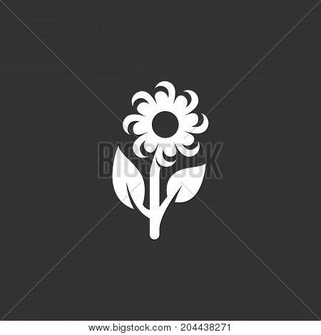 Daisy flower icon isolated on black background. Daisy flower vector logo. Flat design style. Modern vector pictogram for web graphics - stock vector
