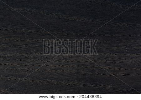 Wood texture background. Natural old oak. High resolution photo.