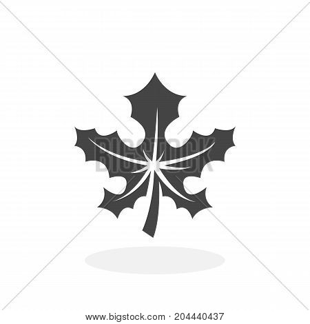 Maple leaf icon isolated on white background. Maple leaf vector logo. Flat design style. Modern vector pictogram for web graphics - stock vector