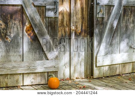 Weathered Barn Doors And Rustic Porch With Small Pumpkin And Autumn Leaves On Ground Outside