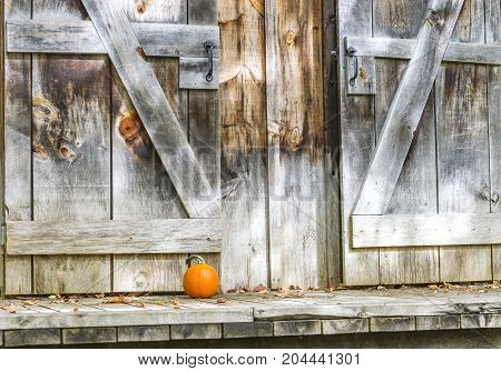 Rustic Weathered Barn Doors With Small Pumpkin Outside