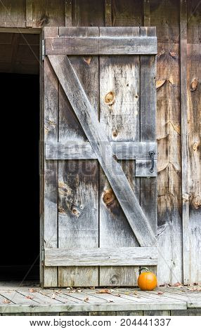 Beautiful Rustic Weathered Open Barn Door And Building With Small Orange Pumpkin As Doorstop, Autumn