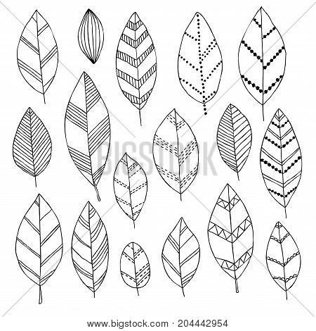 Beautiful black and white set of hand drawn doodle leaves Isolated sketch for design background greeting cards and invitation to the wedding birthday mother s day and other seasonal autumn holidays.