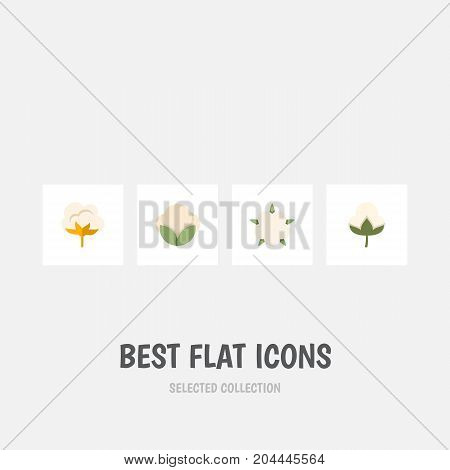 Flat Icon Fiber Set Of Cotton, Flower, Fiber And Other Vector Objects