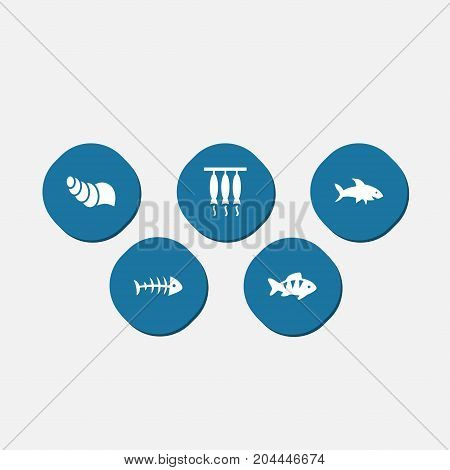 Collection Of Smoked, Remains, Sink And Other Elements.  Set Of 5 Seafood Icons Set.