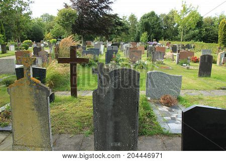 Tombstones on a cemetery in the Netherlands