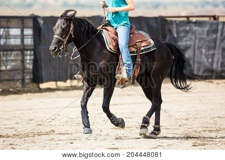 Cowgirl Riding A Roping Horse At The Rodeo