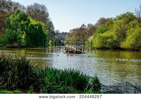 Three pelicans sitting on a rock in the middle of St James's Park Lake London England