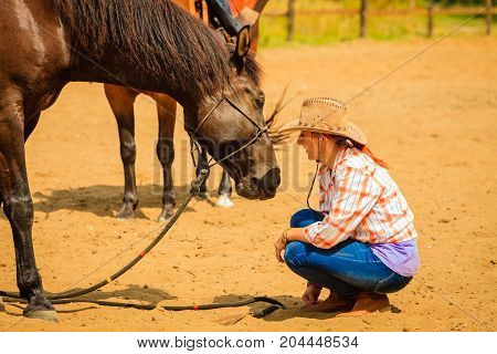Taking care of animals love and friendship concept. Cowgirl in checkered shirt and cowboy hat leading brown horse